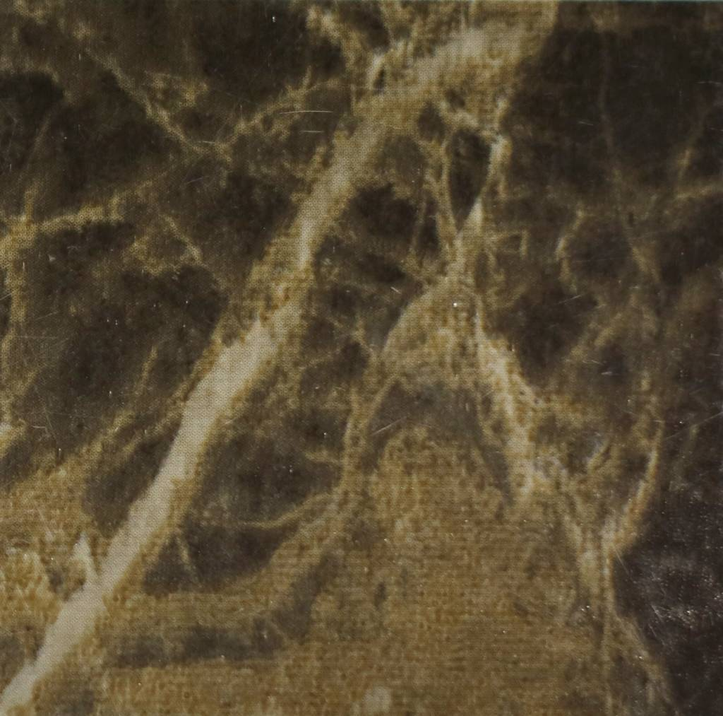 Film intérieur Dark Mable Gloss